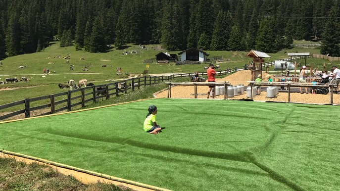 "jump and play at the ""Wabbelwiese"" at the Hög reservoir 