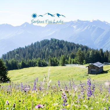 Flower meadow with landscape and barn in summer in Serfaus-Fiss-Ladis, Tyrol, Austria | © Serfaus-Fiss-Ladis Marketing GmbH | danielzangerl.com